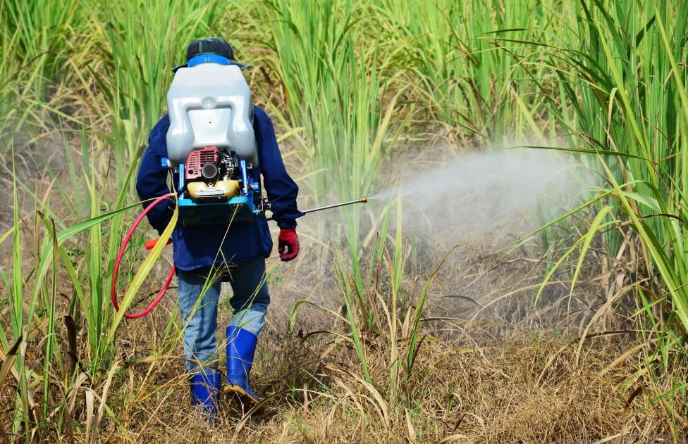 insecticide spraying