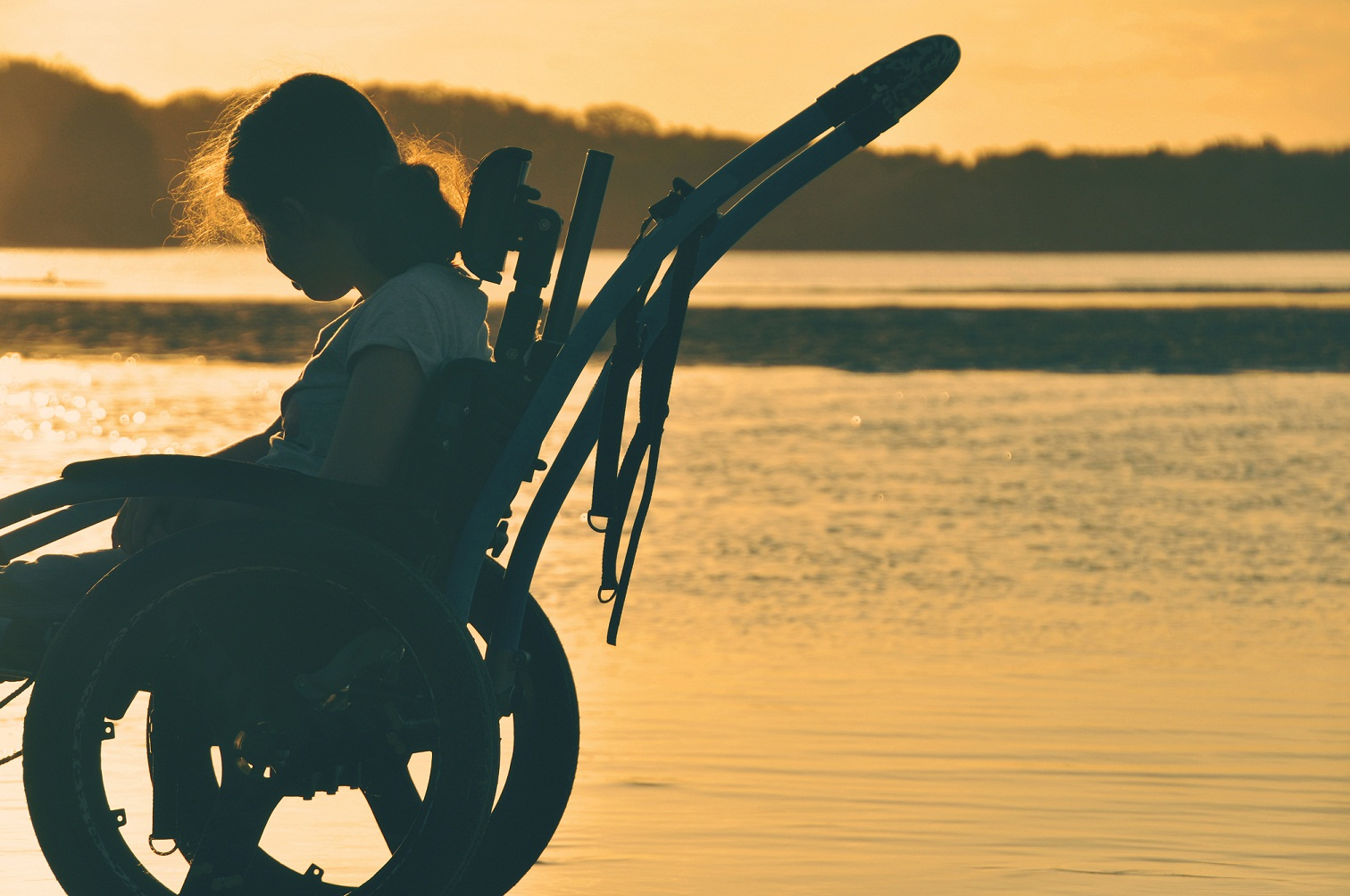 girl in a wheelchair